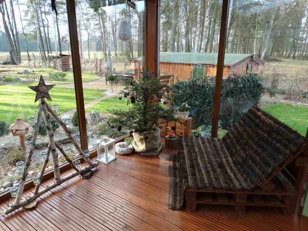 Oranżeria w drewnianym domku - Elżbieta Bieniecka