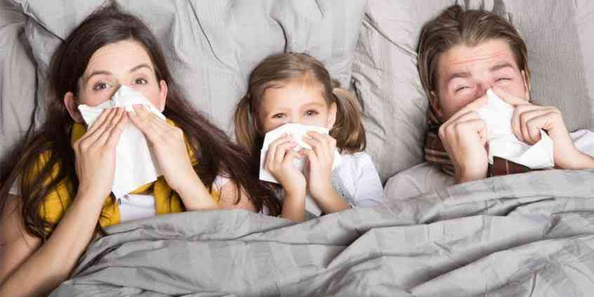 Co to jest alergia na kurz domowy?