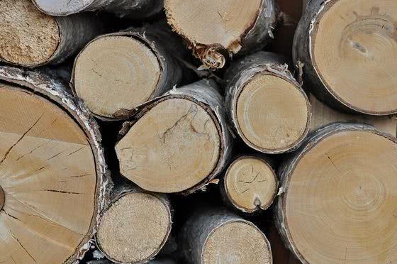 meble drewniane, drewno brzozowe