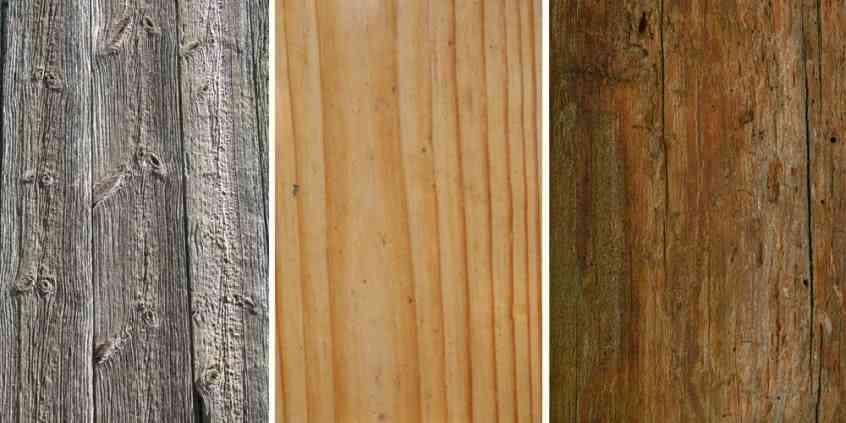 Rodzaje drewna i ich charakterystyka
